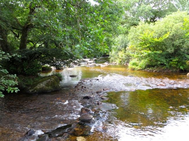 Dartmoor River & Bridge 3