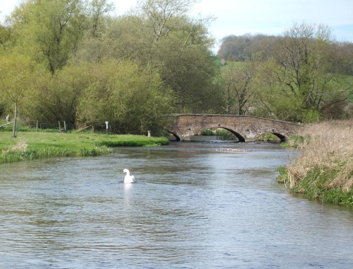 Muckleford Bridge, River Frome Dorset