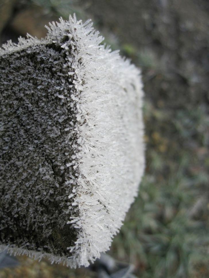 Frost Crystals Dorset 7