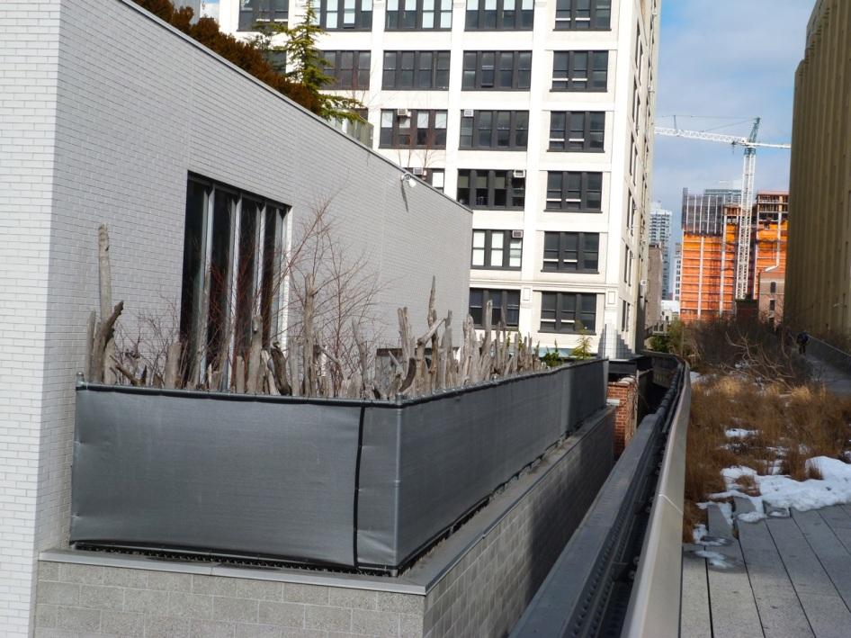 High Line NYC 15