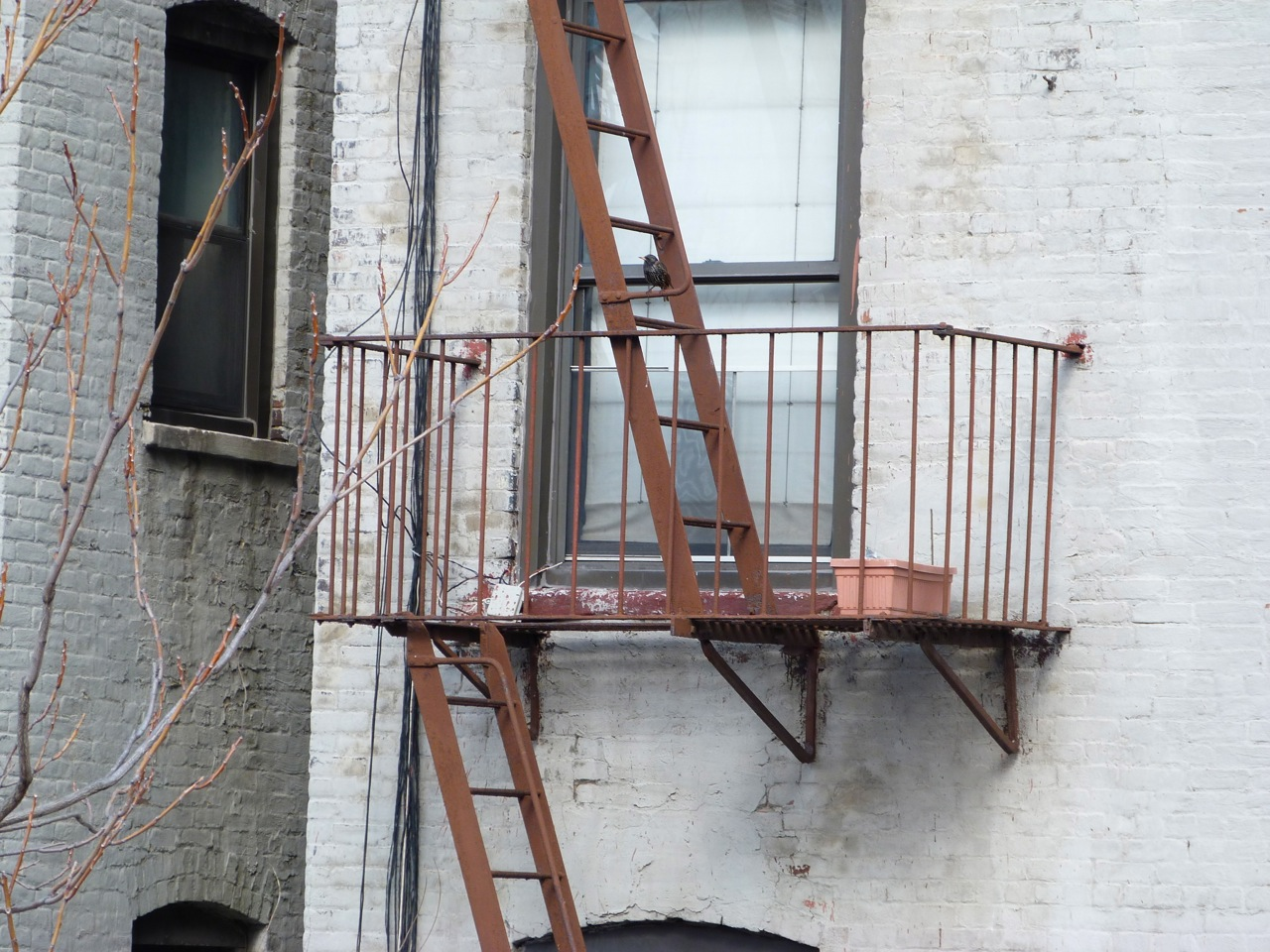 Delightful ... Stairs NYC 4 ...