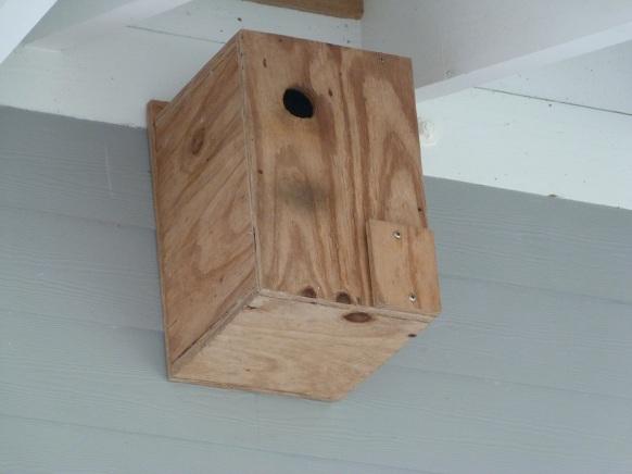 WIW Nesting Box 2