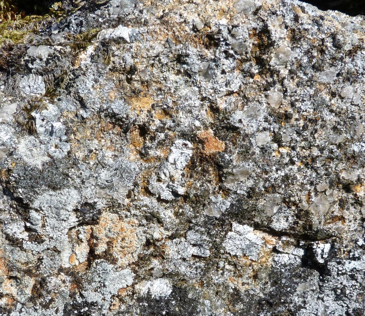 Dartmoor Rock Wall 3