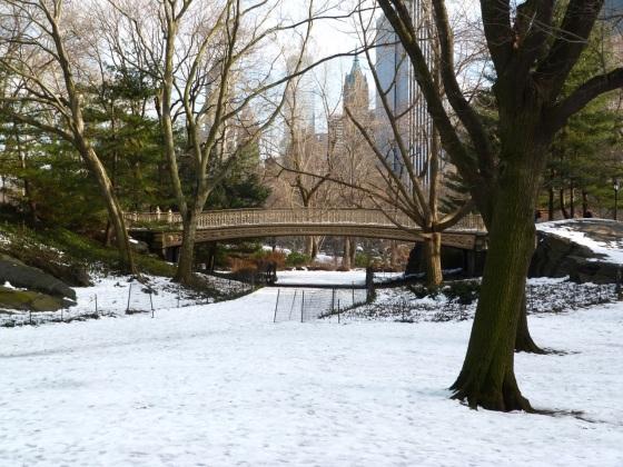 Central Park Bridges, NYC 1