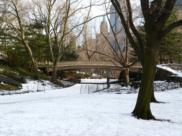 Central Park Bridges, NYC 1