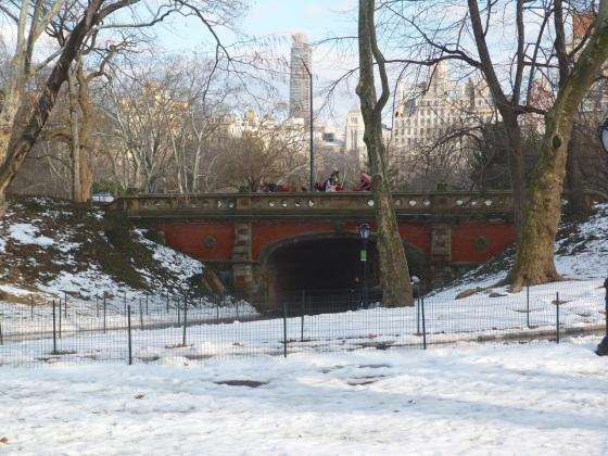 Central Park Bridges, NYC 2