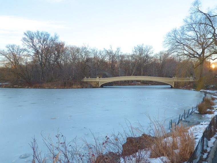 Central Park Bridges, NYC 7
