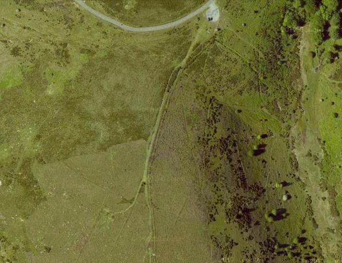Dartmoor Track