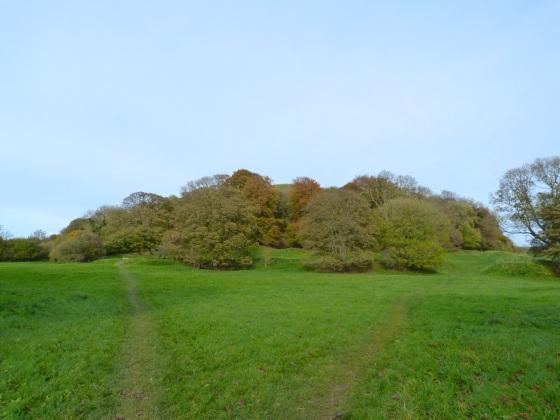 Cerne Abbas, Dorset - The Abbey Ruins Field