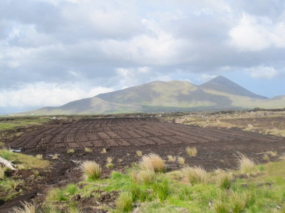 Peat Country, Louisburgh, Co Mayo 6