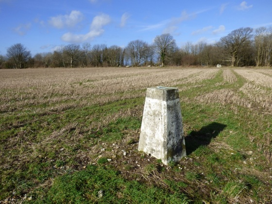 Batcombe Trig Point walk 4
