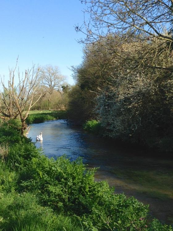 Piddle 1 Dorset 4.14