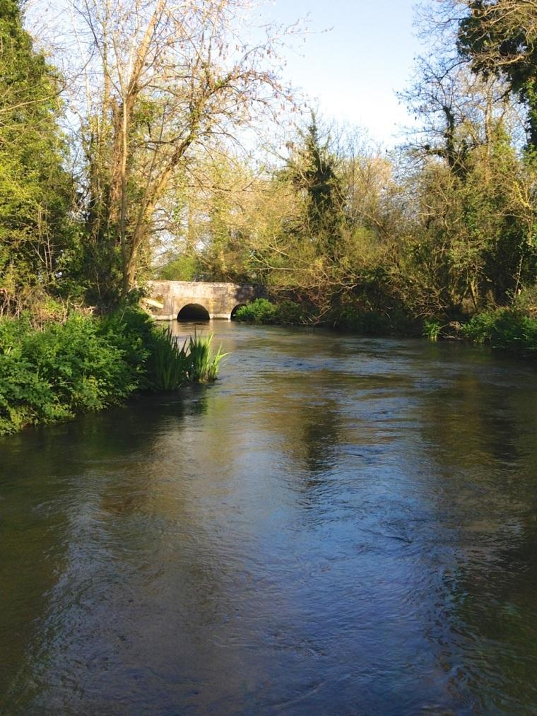 Piddle 2 Dorset 4.14