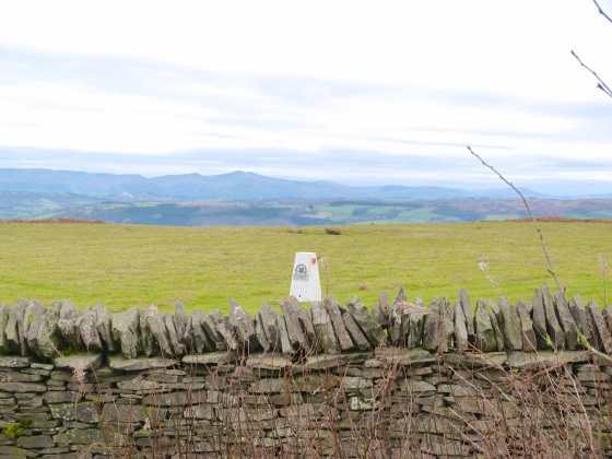 The Begwyns - Trig Point from Enclosure