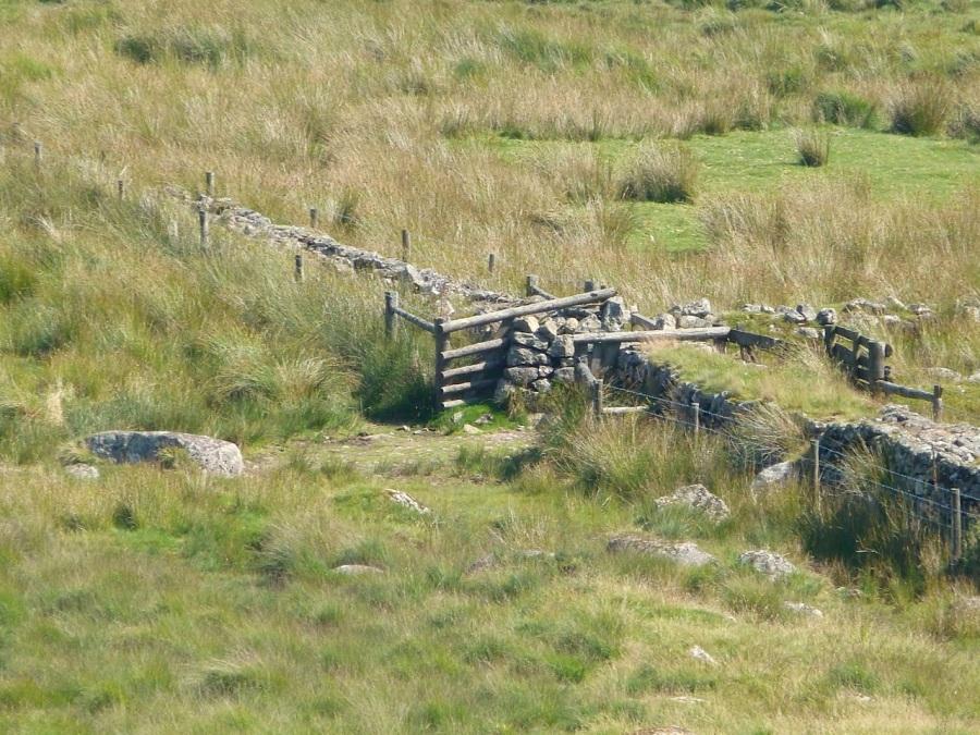 Dartmoor Letterbox 2013-1