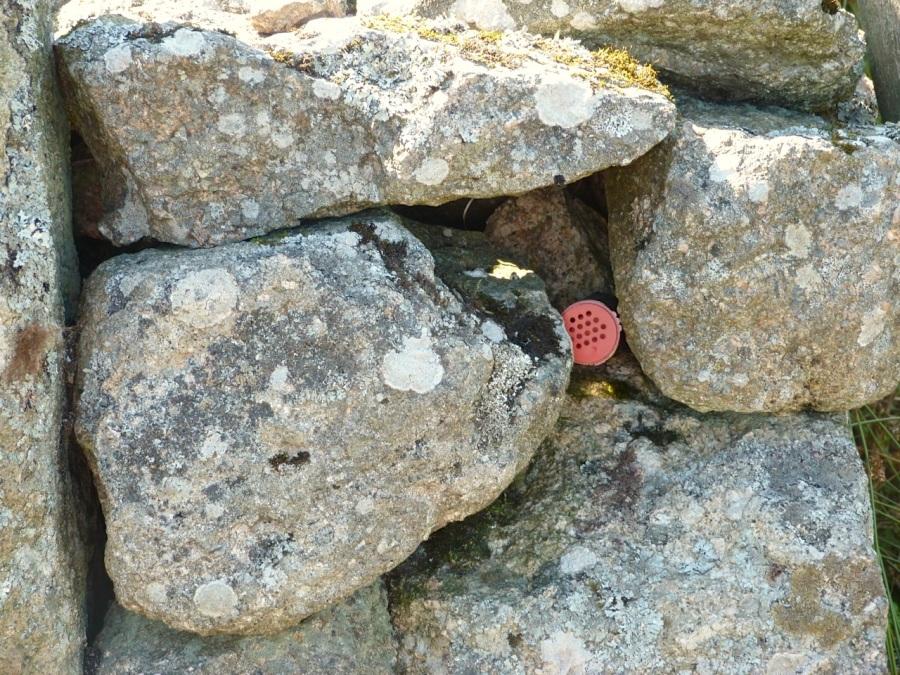 Dartmoor Letterbox 2013-2
