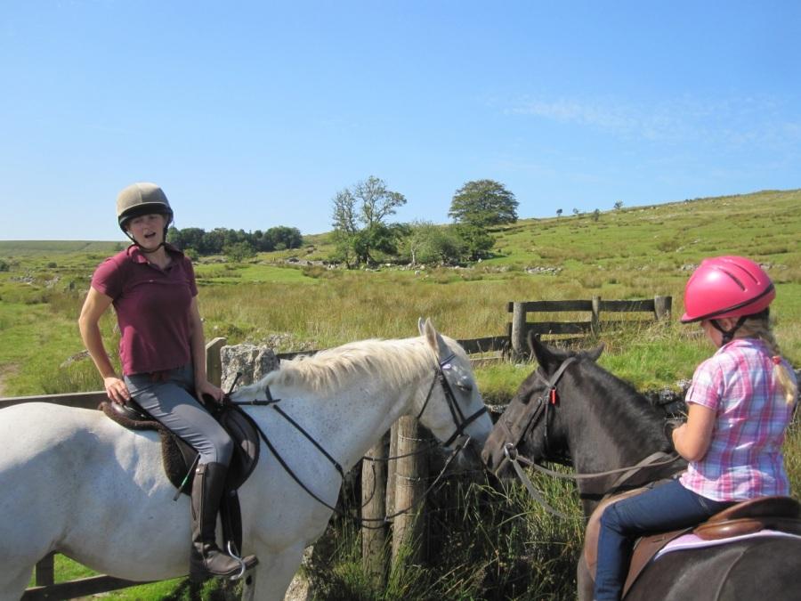 Dartmoor Letterbox 2013-4