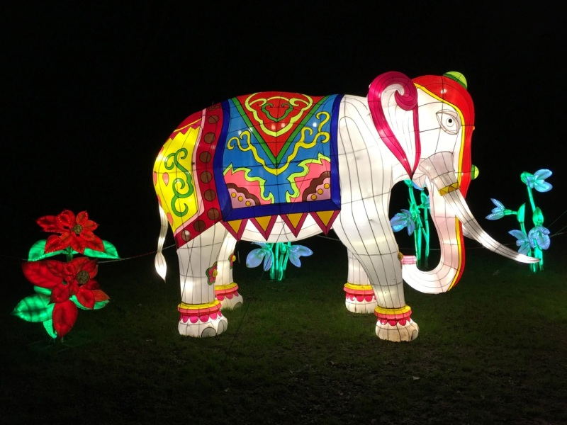 Chinese New Year 2016 Chiswick House 10