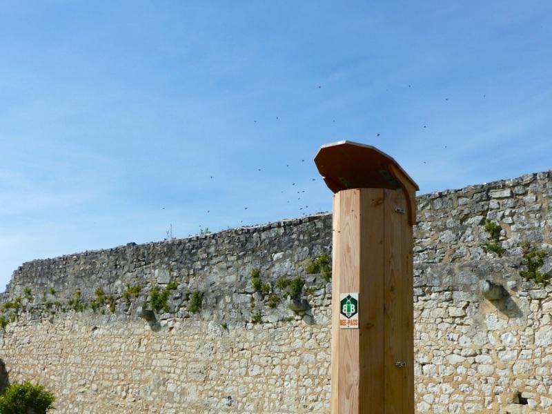 Beehive, St Martin de Boscherville, Normandy 2