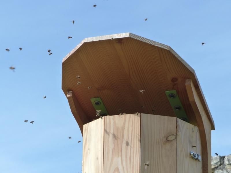 Beehive, St Martin de Boscherville, Normandy 3