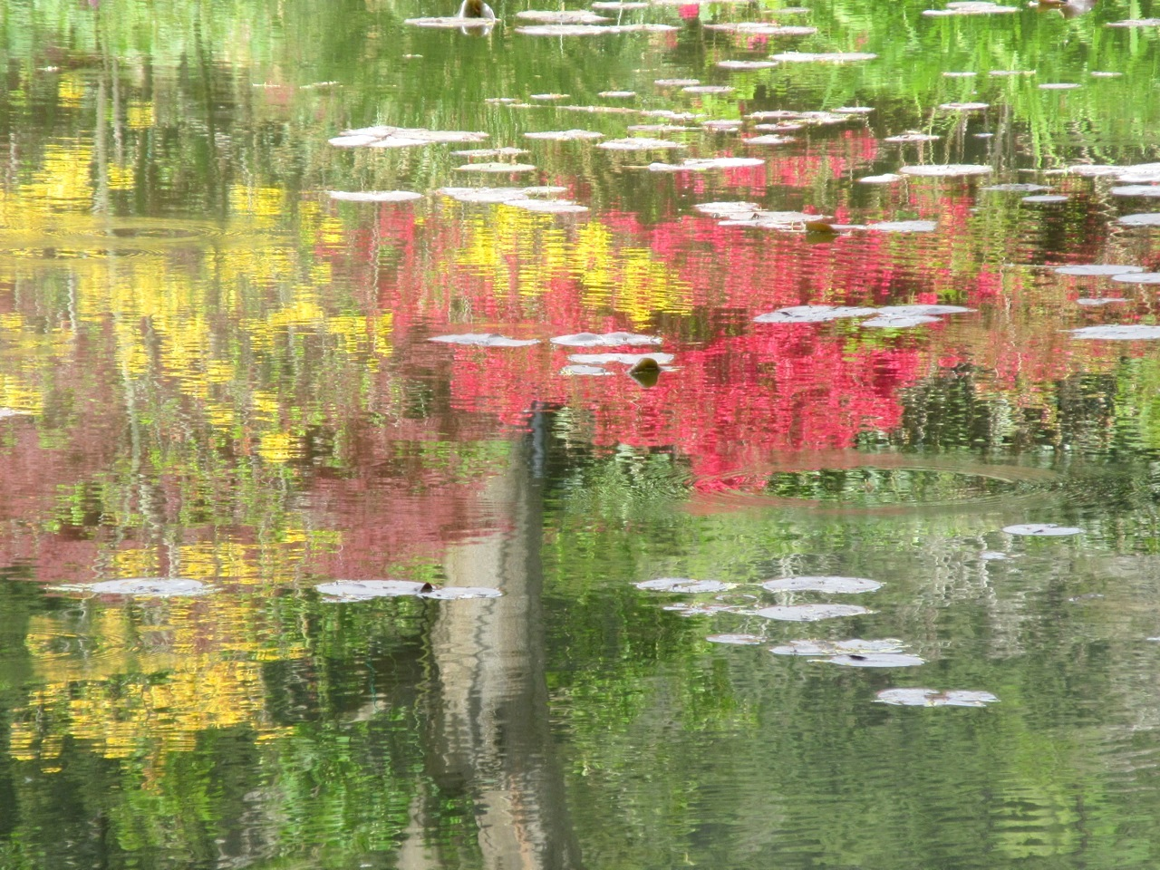 Impressions of Giverny - Lily Pond 02
