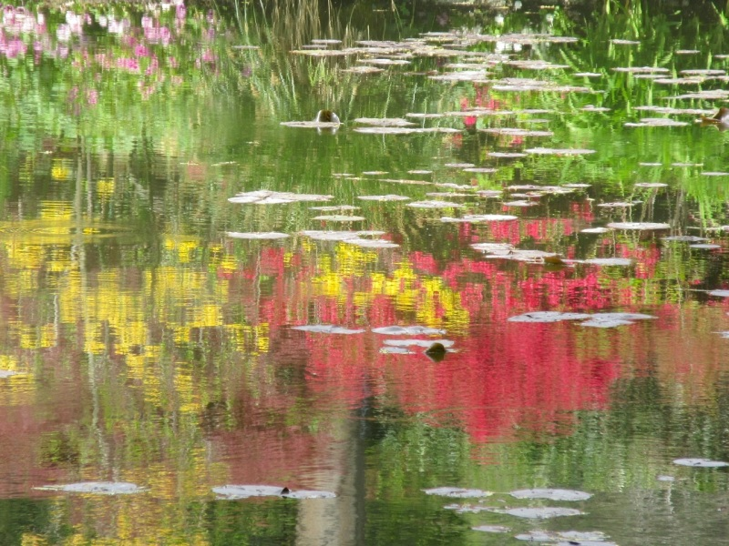 Impressions of Giverny - Lily Pond 03