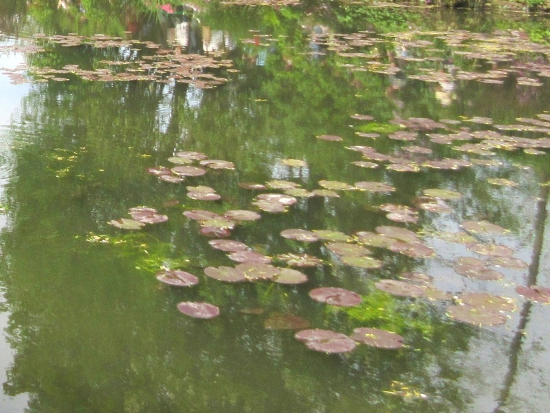 Impressions of Giverny - Lily Pond 05