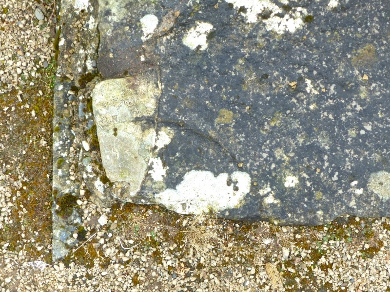 Nave Floor Circles, Shap Abbey, Cumbria