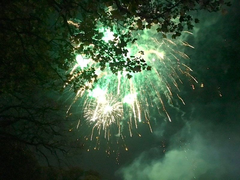 fireworks-2016-08