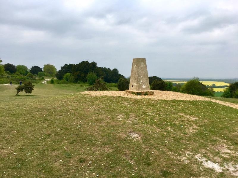 Danebury Trig Point S1695