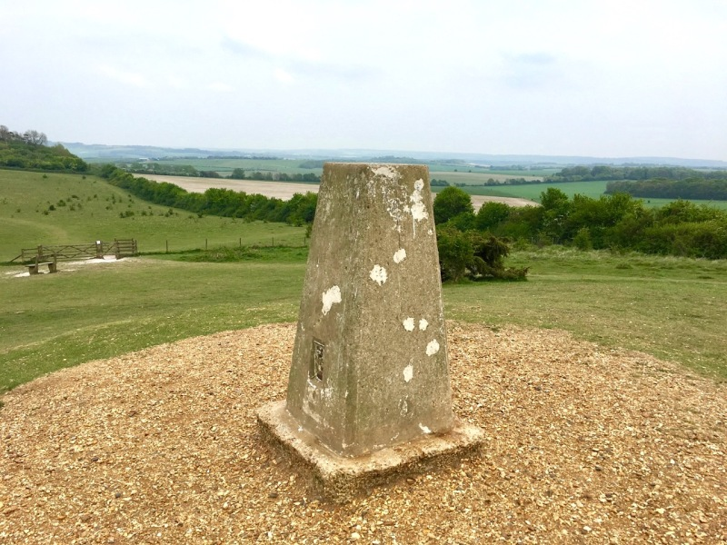 Danebury Trig Point S1695