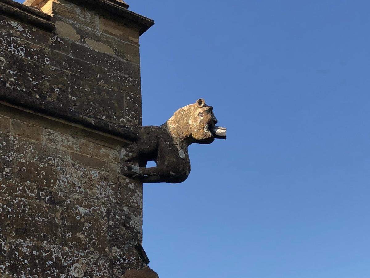 Gargoyle Nether Compton Church Dorset (Keith Salvesen)