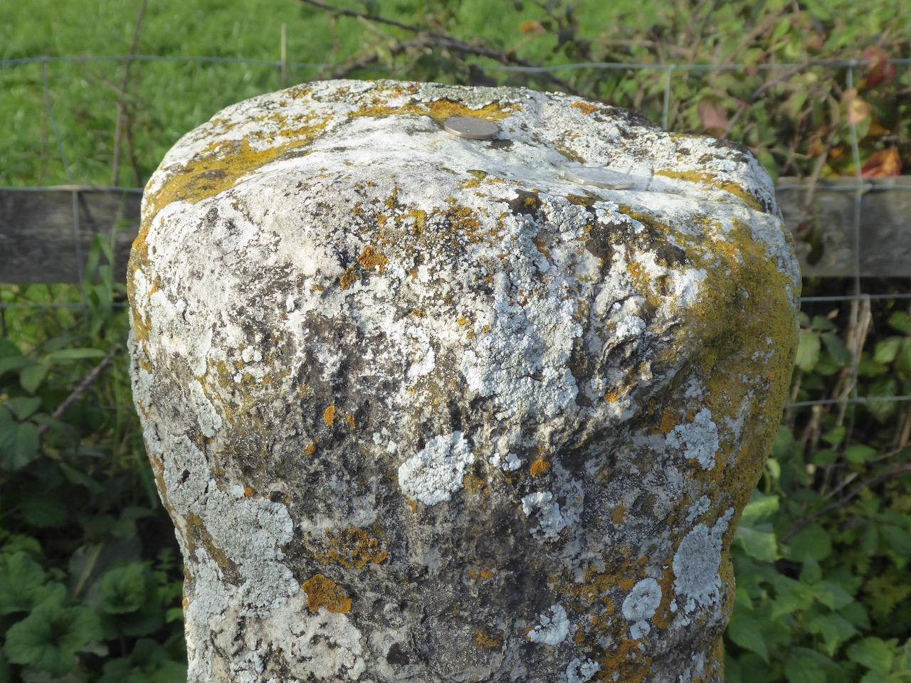 Cross-in-Hand (Cross and Hand) Batcombe Dorset